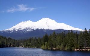 Mt Shasta 9832