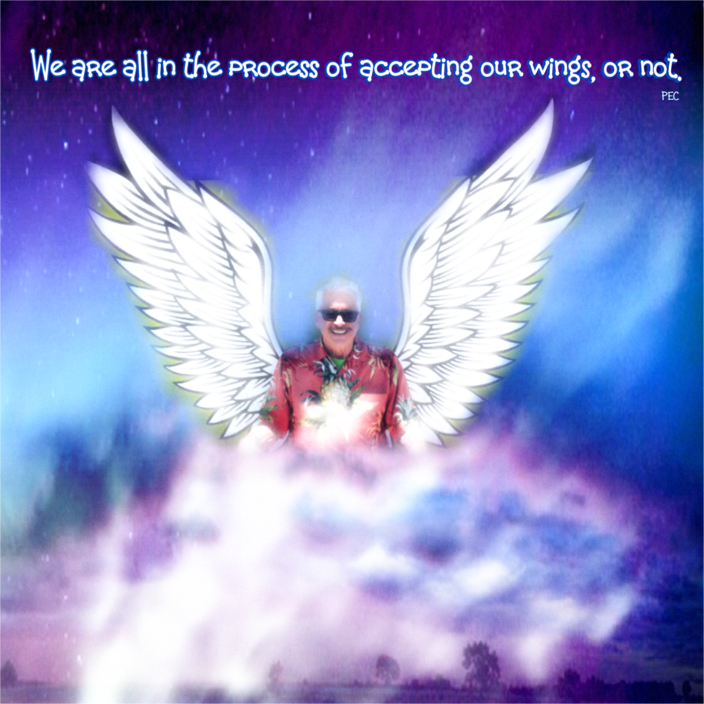 WE ARE ALL IN THE PROCESS OF ACCEPTING OUR WINGS, OR NOT!